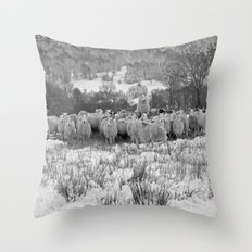 Sheep on the Brecon Beacons.Wales. Throw Pillow