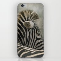 The striped Mohican iPhone & iPod Skin