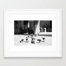 York (245) Framed Art Print