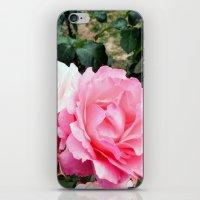 Rose #3 iPhone & iPod Skin