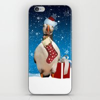 Puffin In The Snow iPhone & iPod Skin