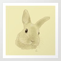 Curious Chris - Drawing Art Print