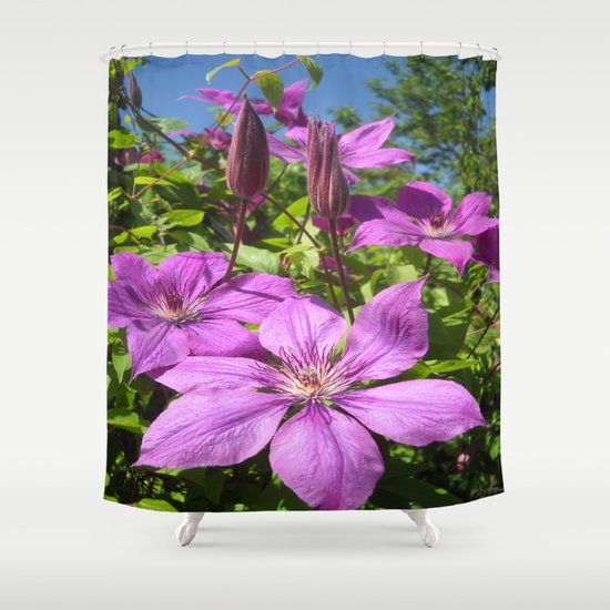 Clematises Shower Curtain