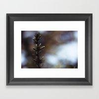 Winter Vision Framed Art Print