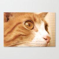 My cat Canvas Print
