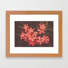 Coral Tales Framed Art Print