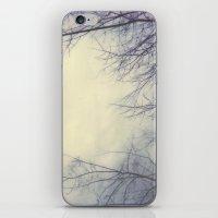 Creepy Trees Polaroid iPhone & iPod Skin