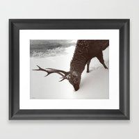 Tender Creature  Framed Art Print