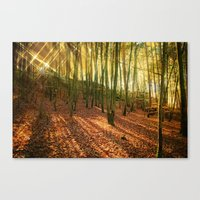 Glittering Forest Canvas Print
