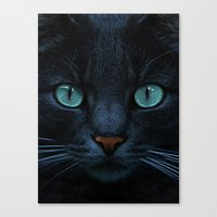 eyes of blue Canvas Print