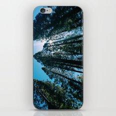 Sequoias iPhone & iPod Skin