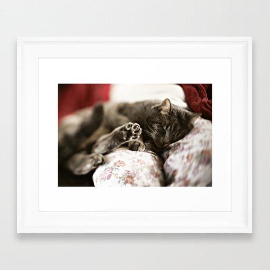 Pancho Framed Art Print