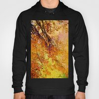 Autumn In Paradise Hoody