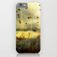Bird Sunset iPhone 6 Slim Case