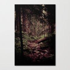 Ancient Woods Canvas Print