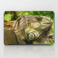 Costa Rican Iguana iPad Case
