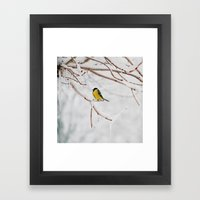 Tit And The Snow. Framed Art Print