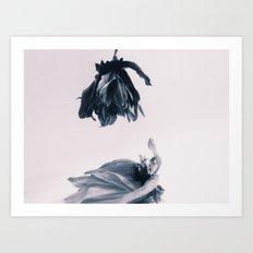 Fading Away II Art Print