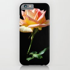 Rose of St. James Slim Case iPhone 6s