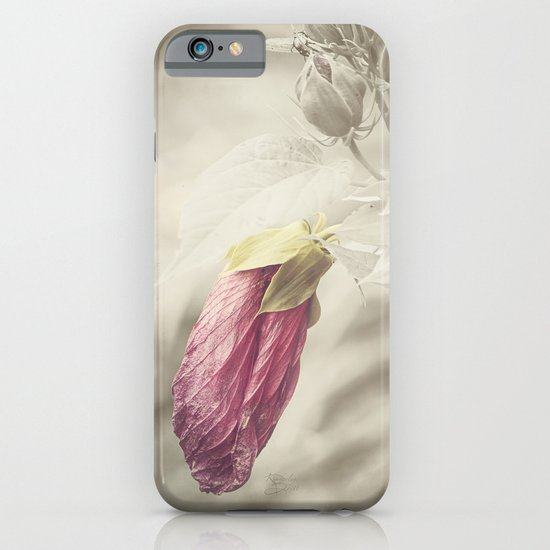 Beauty knows no Age iPhone & iPod Case