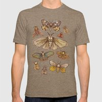 Moths Mens Fitted Tee Tri-Coffee SMALL