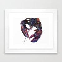 Maine Lobster Art - Watercolor Print Framed Art Print