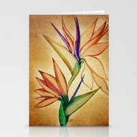 Bird Of Paradise  Stationery Cards