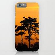 Sunset Trees iPhone 6 Slim Case