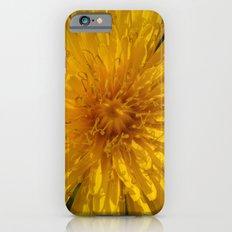 Smiling Dandelion iPhone 6 Slim Case