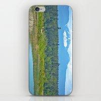 bc mountains iPhone & iPod Skin