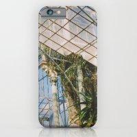 glasshouse iPhone 6 Slim Case
