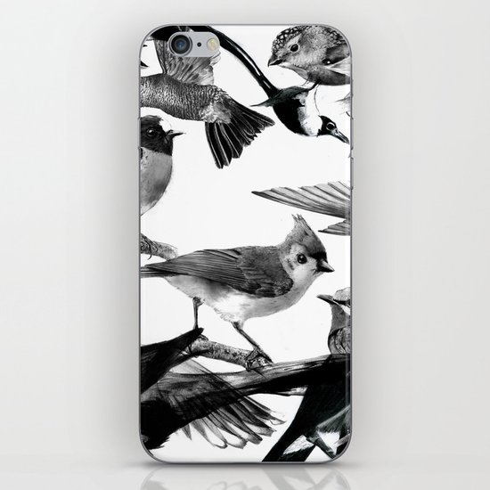 A Volery of Birds iPhone & iPod Skin