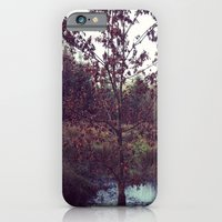 iPhone & iPod Case featuring Autumn Tree by StaceeIrvine