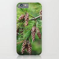 iPhone & iPod Case featuring Pine cones by Captive Images Photography