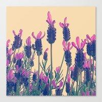 FLOWER 028 Canvas Print