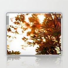 Wind in the Maple Laptop & iPad Skin