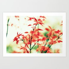 Japanese things 0343 Art Print
