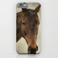 Horse. iPhone 6 Slim Case