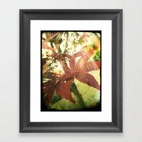 Autumn's Brilliance Framed Art Print