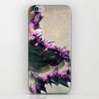Euphorbia iPhone & iPod Skin