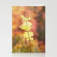 Seasonal Closeup - Autum… Stationery Cards