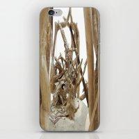 Driftwood iPhone & iPod Skin