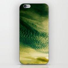 Look Up iPhone & iPod Skin
