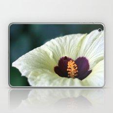 Sugar Magnolia Laptop & iPad Skin