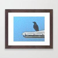 Fish Crow Framed Art Print