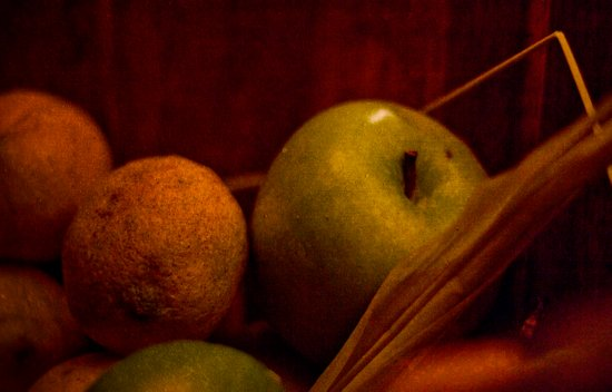 Apple and Orange Still Life Canvas Print
