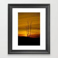 Lone tree sunset Framed Art Print