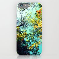 Looking Up iPhone 6 Slim Case
