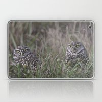 Burrowing Owl Pair Laptop & iPad Skin