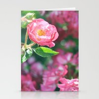 Lily Pulitzer Roses Stationery Cards